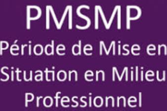 PMSMP