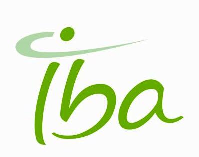 Emploi ingénieur IBA