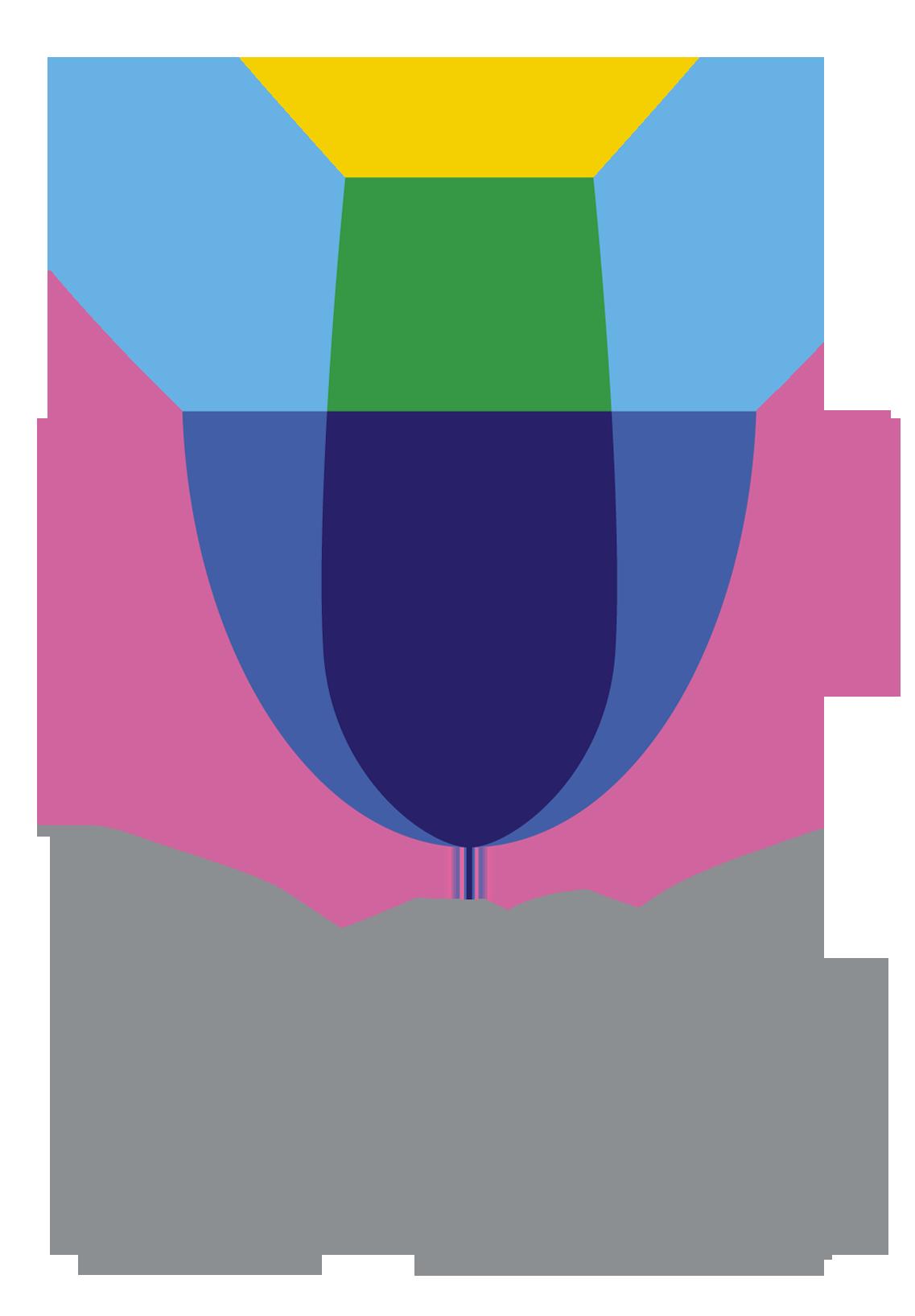 Logo ARC FRANCE