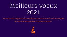 L'équipe DEV&CO vous souhaite une excellente année 2021