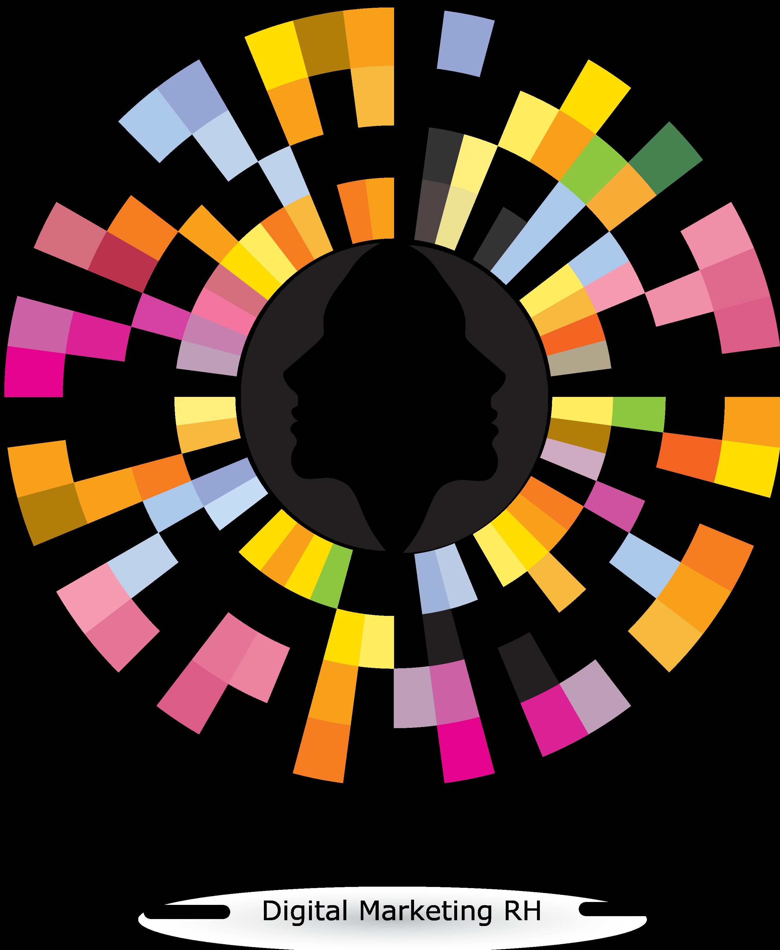 Logo Cabinet DSI