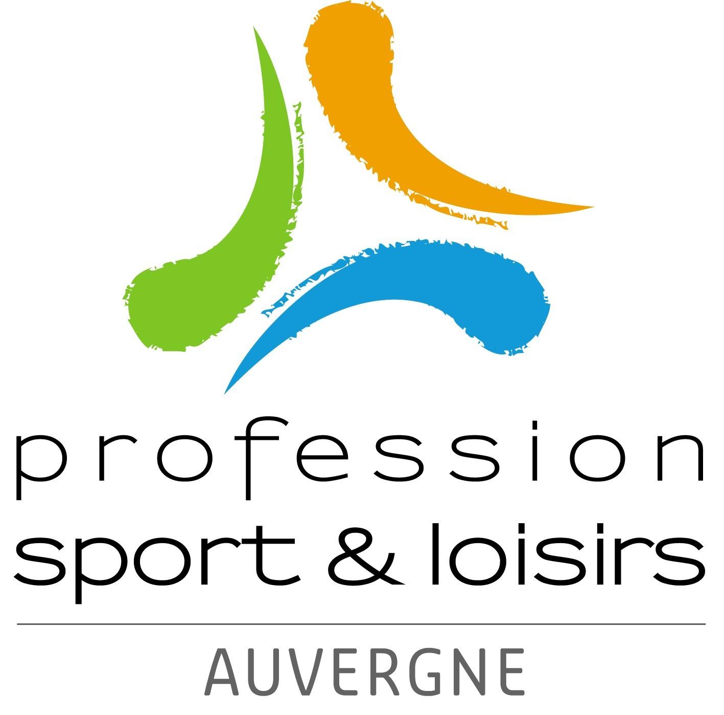 Logo PROFESSION SPORT ET LOISIRS AUVERGNE