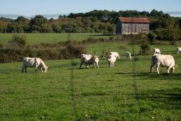 L'agriculture en Nouvelle-Aquitaine : des métiers d'avenir et des formations innovantes