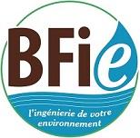 Logo BFIE