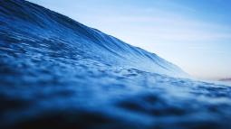Parcours d'insertion vers l'emploi - Métiers de la mer
