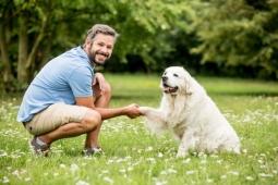 5 métiers pour travailler avec les chiens