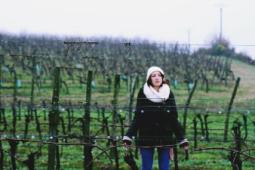 Les viticulteurs charentais recherchent des saisonniers (h/f)