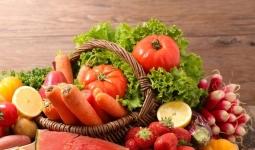 Première en Normandie: une formation pour les amateurs de fruits et légumes lancée à Caen
