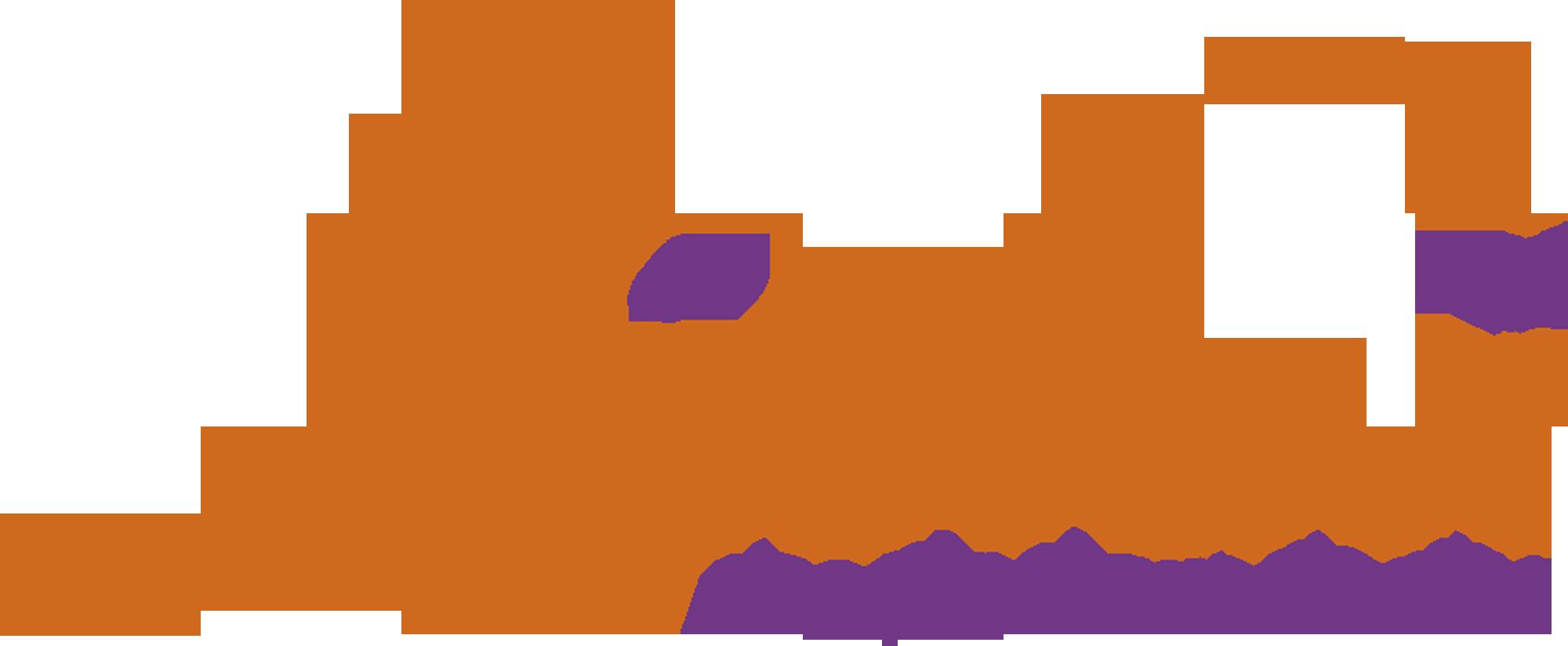 Logo LIORAVI